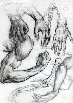 http://www.facebook.com/Academic.drawings
