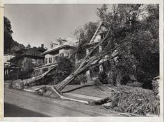 columbus day storm 1962 | Anyone who lived through it and was old enough to remember has stories ...