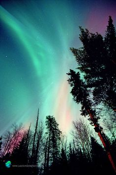 Seek out your fellow aurora hunters.