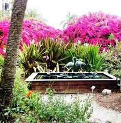 Edison-Ford Winter Estate Botanical Garden- Picture taken by http://FloridaVacationPlans.com