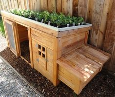 Chickens. - Click image to find more Home Decor Pinterest pins