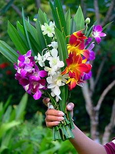 Google Image Result for http://www.orchid-expert.com/images/orchid%2520wedding%2520bouquet%2520-%2520orchid%2520bouquet%25201.jpg