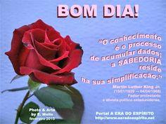 Blog da Beki Bassan - Reflexões: BOM DIA !