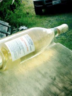 Cinsault in Lodi california as a white wine