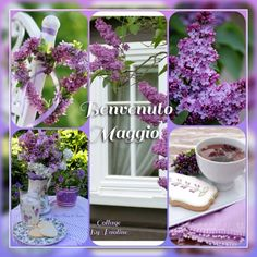 I miei collage by Paoline Collage, Sketch, Table Decorations, Spring, Color, Furniture, Home Decor, Lavender, Sketch Drawing