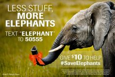 """Proud to be a part of this campaign...Give $10 to HELP Save Elephants TEXT """"ELEPHANT"""" to 50555 #MobileMonday"""