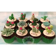 Cactus cacti birthday cake and cupcakes with flowers and roses all handmade with  fondant modelling paste