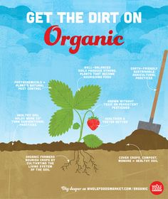 Get the dirt on exactly what organic agriculture is all about!