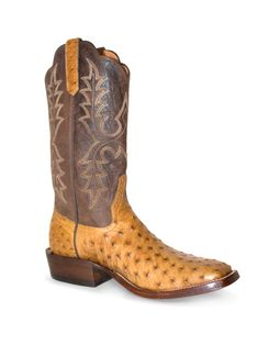 Men's Rios Of Mercedes Antique Saddle Ostrich Western Boots For Men, Western Style, Western Wear, Fashion Boots, Men's Fashion, Liberty Boots, Anderson Bean Boots, Boot City, Wardrobe Images