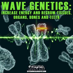 Stillness in the Storm : Wave Genetics: Increase Energy and Regrow Tissues, Organs, Bones and Teeth