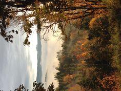 Fall in the Willamette Valley Oregon