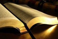 """""""Os nossos antepassados comeram o maná no deserto, como dizem as Escrituras Sagradas: 'Do céu ele deu pão para eles comerem'"""" (Jo 6.31)."""