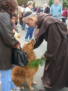 43 Best St  Francis Day - Blessing of Pets images in 2014