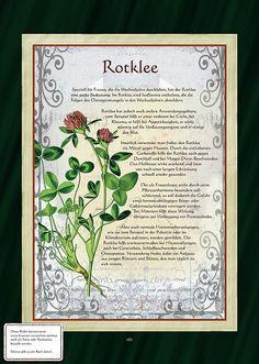 Lungenkraut - All For Garden Healing Herbs, Medicinal Plants, Natural Healing, Plant Illustration, Botanical Illustration, Herbal Witch, Herbal Essences, Herbal Teas, Herbs For Health