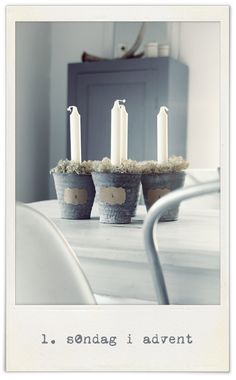 diy idea:  Advent, but with a coastal flavor/Spanish moss
