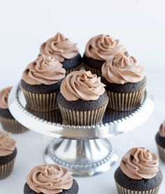 Dark Chocolate Cupcakes-How many chocolate cake recipes does one person need?As of this post, I have three other chocolate cake recipes on the site. These Dark Chocolate Cupcakes will be the fourth. All four have their Chocolate Olive Oil Cake, Dark Chocolate Cupcakes, Chocolate Whipped Cream, Chocolate Frosting, Chocolate Heaven, Chocolate Cakes, Frosting Recipes, Cupcake Recipes, Cupcake Cakes