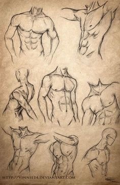 """Male Body Sketches"" - Vinnie 14, DeviantArt.com Repinned by www.BlickeDeeler.de:"