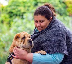 #dog #dogphotography #kutya #kutyafotózás #sharpei #kiskutya #kutyafotó #photo #photography #fotózás #fotó #margitsziget #pet #petphotography #animallove