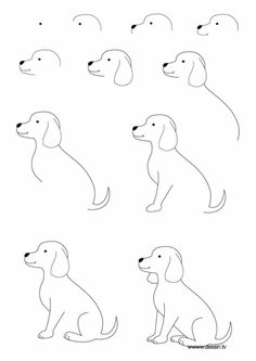 How to draw a Dog Step By Step Easily Ideas) Drawing Tips easy dog drawing Fish Drawings, Cartoon Drawings, Animal Drawings, Cute Drawings, Drawing Sketches, Drawing Ideas, Drawing Tips, Drawing Animals, Drawing Techniques