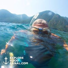 Snorkel in the sunshine at Lake Cushman. #lakecushman #olympicpeninsula #wildsideWA #explorehoodcanal #hoodcanal #snorkel #blue #olympicnationalpark #beauty #summer #amazing #awesome #nature #beautiful #cool #happy #instagood #fun #blue #water #upperleftusa #washington