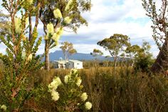 Set in a wide open buttongrass moorland, this eco-retreat is the southernmost accommodation in all Australia. The big open sky and wildflowers make this a truly memorable experience