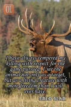 Respect for game pursued quote by Fred Bear #bowhuntingtips