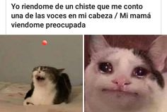 Best Memes, Dankest Memes, Bts You Never Walk Alone, Funny Jokes, Hilarious, Mexican Memes, Lol, Anime Best Friends, Funny Images