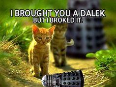 But I wanted a dalak!