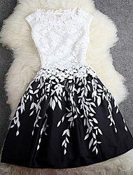 Women's Fashion All Match Lace Dress