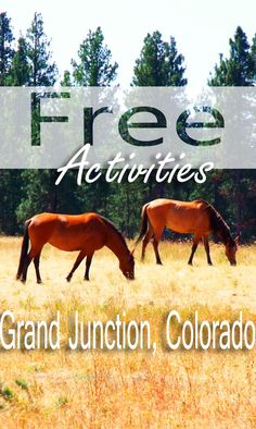 9 Free Things to Do in Grand Junction, Colorado