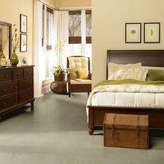 Incroyable Shaw Carpet