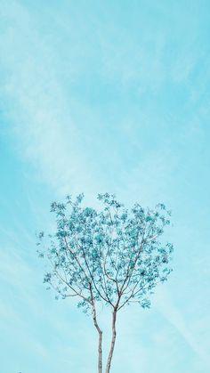 Một màu xanh đầy hi vọng....