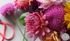 junifaden: #flowersforinga #2flowergirls