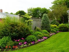privacy border landscaping - Google Search
