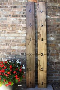 Diy Growth Chart Ruler Vinyl Decal Kit - Alternating Style - Large #s