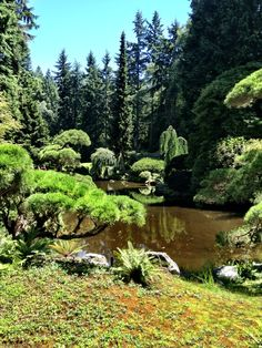 Visit the Bloedel Reserve and Gardens on Bainbridge Island, WA