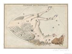 The Pegasus and Equuleus Constellation Giclee Print