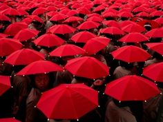 red umbrellas Red Umbrella, Under My Umbrella, National Geographic, Foto Transfer, I See Red, Red Pictures, Red Images, Book Images, Simply Red