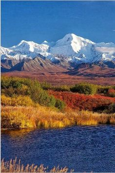 倫☜♥☞倫 Denali, Alaska ....♡♥♡♥♡♥Love★it