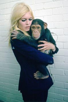 Brigitte Bardot: the most beautiful animal rights activist Bridgitte Bardot, Patti Hansen, Lauren Hutton, Jacques Charrier, French Models, Vogue, French Actress, Celebs, Celebrities