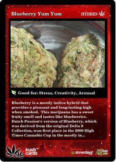 Blueberry Yum Yum | Repined By 5280mosli.com | Organic Cannabis College | Top Shelf Marijuana | High Quality Shatter