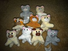 Collecting all the Pound Purries (I have the top 5! Frisky, Tiger, Patches, Coffee, & Snowflake. Still remember the names I gave them...oh gosh. xD)