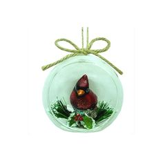 Holiday Living 90MM DIA. GLASS DOME W/CARDINAL INSIDE XMAS HANGING... (€6,02) ❤ liked on Polyvore featuring home, home decor, holiday decorations, glass dome, glass christmas ornaments, cardinal christmas ornaments, holiday ornament and christmas holiday decorations