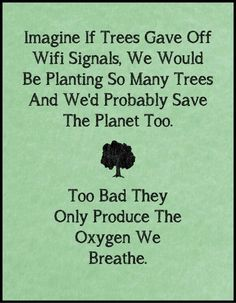Too bad they only give us the oxygen that is vital to our survival ugh selfish trees