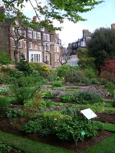 Must visit.  I could so spend the day here! Chelsea Physic Garden, London, England.