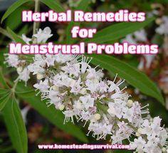 Herbal Remedies For Menstrual Problems!  More info here: http://homesteadingsurvival.com/herbal-remedies-for-menstrual-problems/
