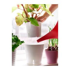 Deluxe indoor outdoor Self Watering Plant Pot Height 14cm Diameter 12cm - White GRÖNPEPPAR http://www.amazon.co.uk/dp/B00TDOE13G/ref=cm_sw_r_pi_dp_wCm2ub1SH1Y4D