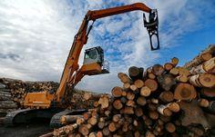 #срочно #ТАСС | Для агробизнеса Поморья разработают регламент по заготовке леса | http://puggep.com/2015/11/02/dlia-agrobiznesa-pomoria-razra/