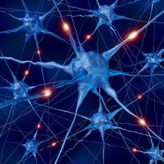 r1287418_17487241.jpg (840×840)  indivdual neurones that encode memories (iStockphoto: wildpixel)