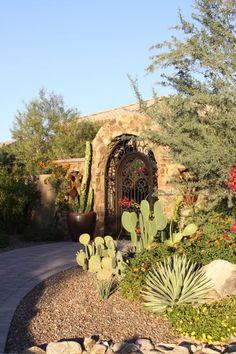 desert landscaping                                                                                                                                                                                 More